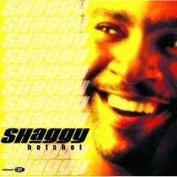 Shaggy - Hot Shot