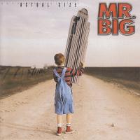Mr. Big - Actual Size
