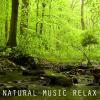 Natural Music Relax     - Calm Heart