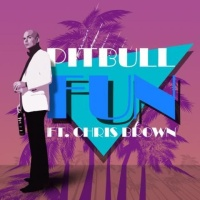 Pitbull feat. Chris Brown - Fun