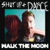 Walk The Moon — Shut Up and Dance