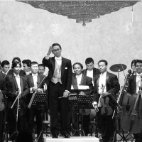 The Twilight Orchestra