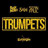 Sak Noel & Salvi - Trumpets (Original Mix)