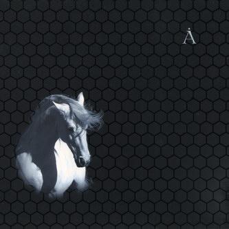 Аквариум - Лошадь Белая (Album)