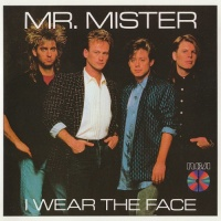 Mr. Mister - Partners In Crime