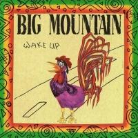 Big Mountain - Wake Up (Album)