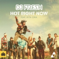 Hot Right Now (Zed Bias Remix)