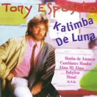 Tony Esposito - Kalimba De Luna