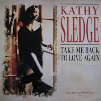 Roger Sanchez - Take Me Back To Love Again