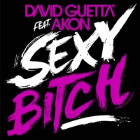 David Guetta - Sexy Bitch (Single)