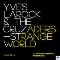 Yves Larock - Strange World WEB