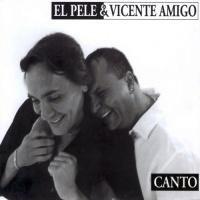Слушать Vicente Amigo - Rincon De Los Amargos (Solea)