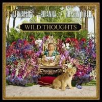 DJ Khaled feat. Rihanna - Wild Thoughts