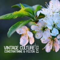 Vintage Culture - Eyes