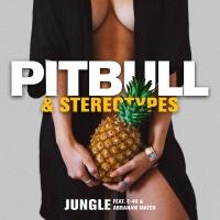 Pitbull - Jungle