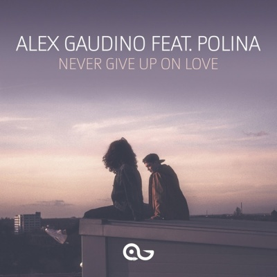Alex Gaudino - Never Give Up On Love (Single)