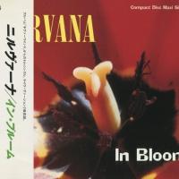 Nirvana - In Bloom (Single)
