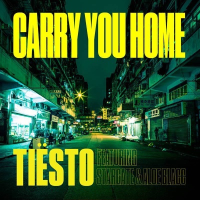 Tiesto - Carry You Home