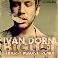 Слушать Иван Дорн - Бигуди (Slider & Magnit Remix)