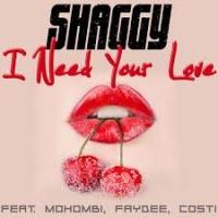 Shaggy - Berlin Tag & Nacht #7