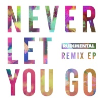 Never Let You Go (Don Diablo Remix)