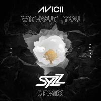 Without You (Syzz Remix)