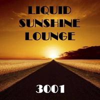 - History Of Dance 08 The Lounge Edition Top 100