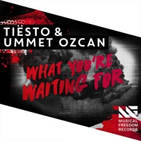 Tiesto - What You're Waiting For