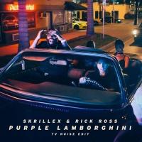 Purple Lamborghini (TV Noise Edit)