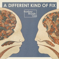 Bombay Bicycle Club - Lights Out, Words Gone