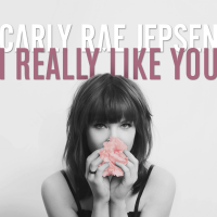 Carly Rae Jepsen - I Really Like You (Mike Williams Bootleg)