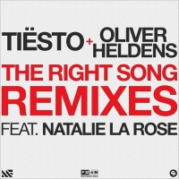 Tiesto - The Right Song (Mike Williams Remix)