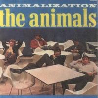 - Animalization