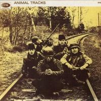 - Animal Tracks