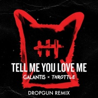 Galantis - Tell Me You Love Me (Dropgun Remix)
