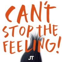 Justin Timberlake - Can't Stop The Feeling (Redondo Edit)