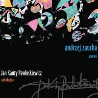 Andrzej Zaucha - Nie Przerywajcie Zabawy