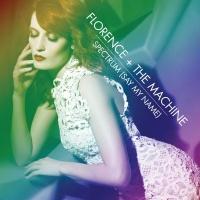 Florence And The Machine - Spectrum (Calvin Harris Remix)