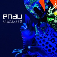Chameleon (The Remixes Part 2)