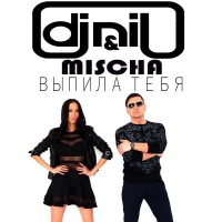 DJ Нил - Выпила Тебя
