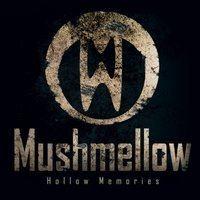 Mushmellow - Falling
