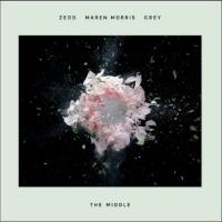 Zedd feat. Maren Morris & Michael Gray - The Middle