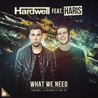 Hardwell - What We Need