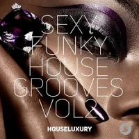 - Sexy Funky House Grooves Vol.2