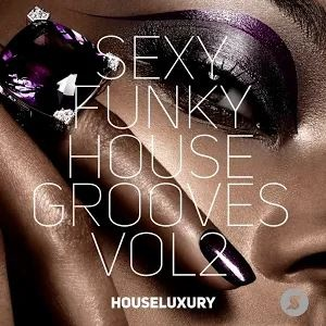 Samuele Sartini - Sexy Funky House Grooves Vol.2