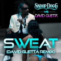 David Guetta feat. Snoop Dogg - Sweat (David Guetta Remix)