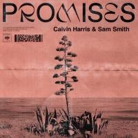 Calvin Harris & Sam Smith - Promises