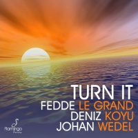 Fedde Le Grand - Turn it