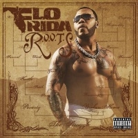 Flo Rida - R.O.O.T.S. Route Of Overcoming The Struggle