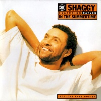 Shaggy - The Very Best Of Pop Music 199